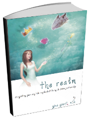 The Realm Book cover